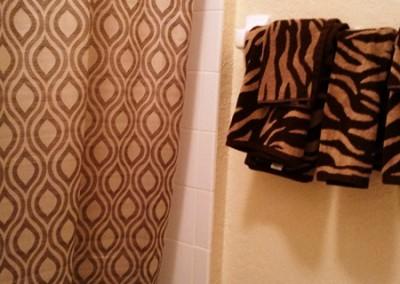 Twin Bath / Shower